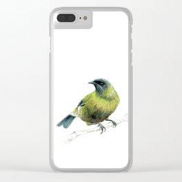 Korimako, the Bellbird Clear iPhone Case