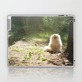 Rawwr! Laptop & iPad Skin