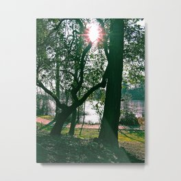 Sol Invictus returns Metal Print