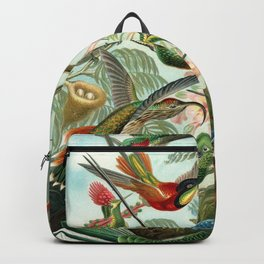 Vintage Hummingbirds Decorative Illustration Backpack