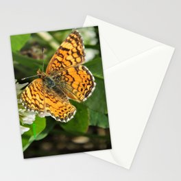 A Mylitta Crescent Butterfly at Rest Stationery Cards
