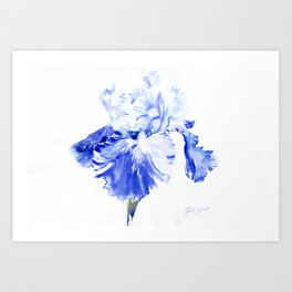 Iris Blue Art Print