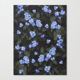 Blue Dark Floral Garden: Forget-me-nots Canvas Print