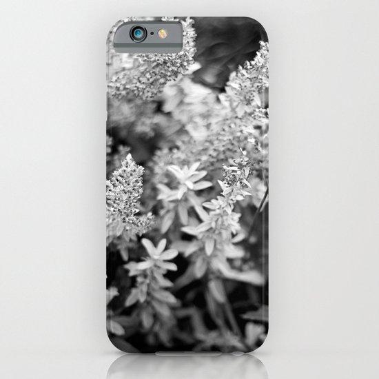 Leaves black n white iPhone & iPod Case