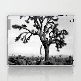 Joshua Tree, Mojave Desert 1904 Laptop & iPad Skin