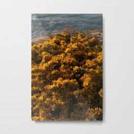 Yellow Flowers fields on a Cliff Metal Print
