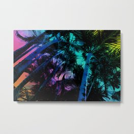 The Palm Trees Under the Seaside Rainbow Metal Print