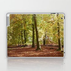 Autumnal beech trees in a natural woodland. Norfolk, UK. Laptop & iPad Skin