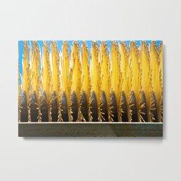 Brushes  Metal Print