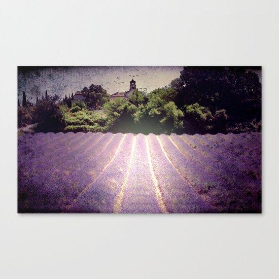 Lavenderdays Canvas Print