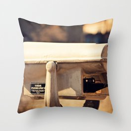 Lakeside Panoramic Visor Throw Pillow