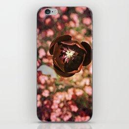 Marsala Tulip Flower iPhone Skin