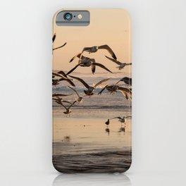 Seagull Birds Flying at Sunset on the Beach in California Photography, Beach Art, California Coast Home Decor, Fine Art Photography iPhone Case