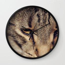 Kitties are so nice. Wall Clock