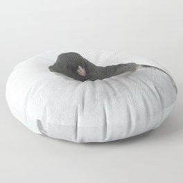 Snow Bird (Dark-eyed Junco) Floor Pillow