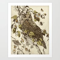 moth Art Prints featuring Great Horned Owl by Teagan White