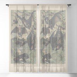 Chiroptera Sheer Curtain