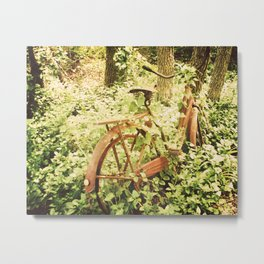 Ole Rusty Bicycle Abandoned Urban Exploration Urbex Taken Over by Nature  Metal Print