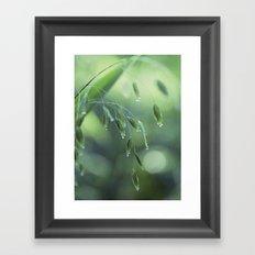 dew drop morning Framed Art Print