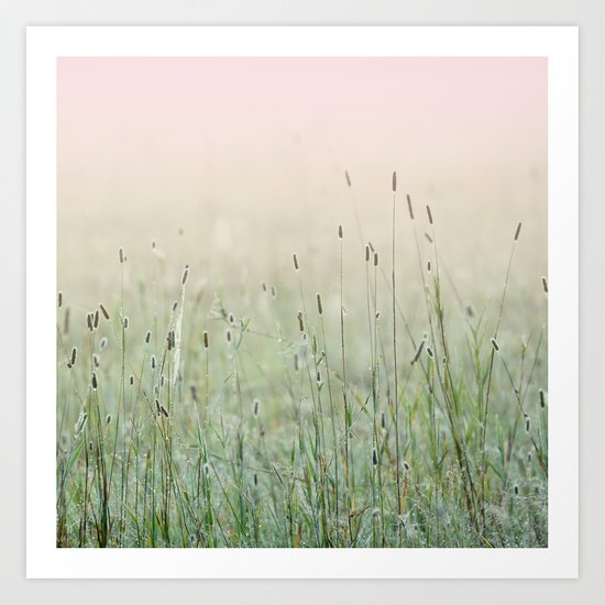 Idyllic Grass Field in the Morning Sun Art Print