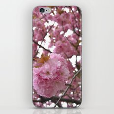 Hello Spring iPhone & iPod Skin