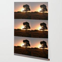 Evening Golden Landscape Wallpaper