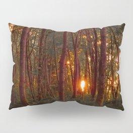 Summer Sunset Pillow Sham