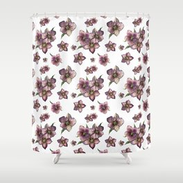 Hellebore flower or Christmas rose Shower Curtain