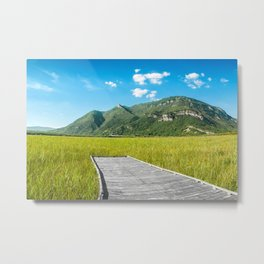 Beautiful mountain scenic with wooden footpath in field under sunlight Metal Print
