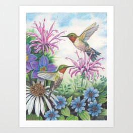 Hummingbird and Bergamot Art Print