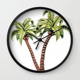 Coconut palm family genus Cocos botanically drupe nut Wall Clock