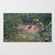 Look who I met at the Lake Canvas Print