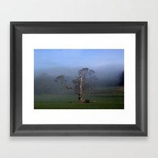Life on a Limb Framed Art Print