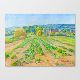 Václav Radimský (1867-1946) Cabbage Fields near Vernon Modern Impressionist Oil Painting Colorful Canvas Print