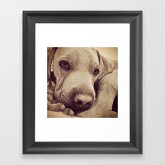 Dogs are Family Framed Art Print