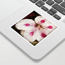 Flowers in the Summer Rain Sticker