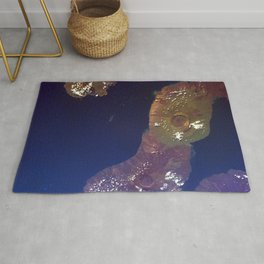 This image of the Galapagos Islands captures two large shield volcanoes on Isla Isabella Rug