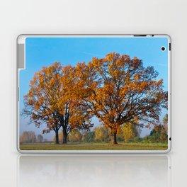 Oaks in the misty Autumn morning (Golden Polish Autumn) #2 Laptop & iPad Skin