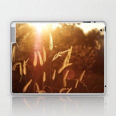 Wild grass Laptop & iPad Skin