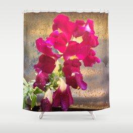 Snap dragon Shower Curtain