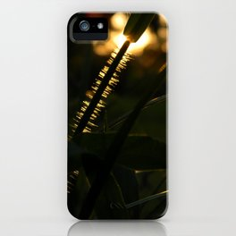 Itchy iPhone Case