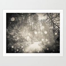 Nature Trail - Black and White Magical Path Art Print