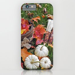 Gourds and Indian Corn 4 iPhone Case
