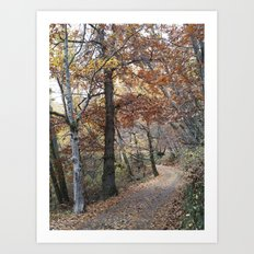 Into the fall woods. Yesterday Art Print