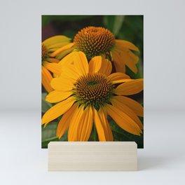 Autumn echinacea Mini Art Print
