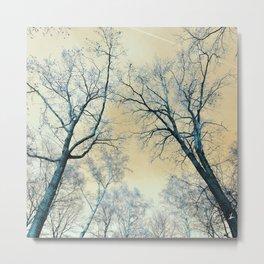Trees nature infrared landscape Metal Print