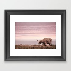 sunset and the highland cow Framed Art Print