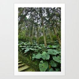 Forest Blanket Art Print