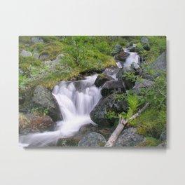 Mountain Stream Metal Print