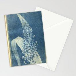 Flower 805 ornithogalum caudatum Long spiked Star of Bethlehem10 Stationery Cards